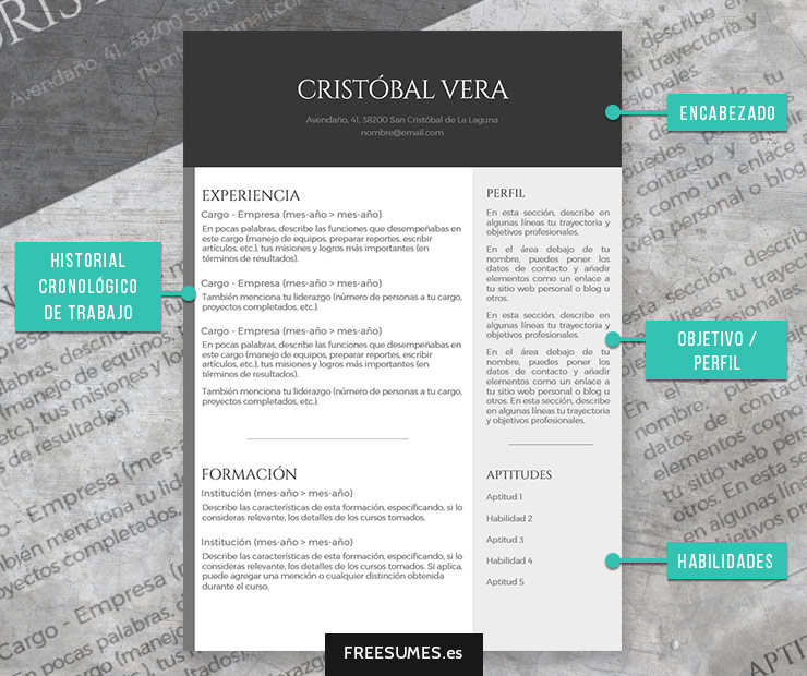 currículum cronológico