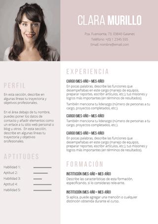 plantilla currículum rosa vintage